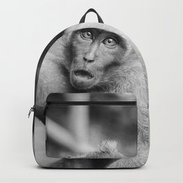 Cute Monkey (Black and White) Backpack
