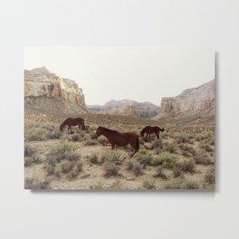 Hualapai Hilltop Horses Metal Print