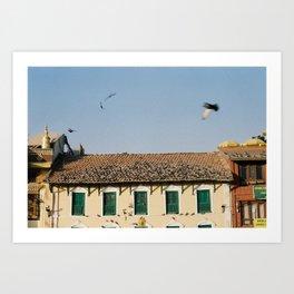 Flying Birds at Boudha Katmandú, Nepal. Film Photography Print Art Print