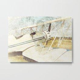 Flight of Fancy // Antique Airplanes Metal Print