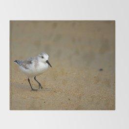Sanderling Throw Blanket