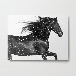 Polka Dot Pony - Black and White Nature Photography Metal Print