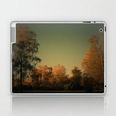 Lichtstimmung auf der Heide Laptop & iPad Skin