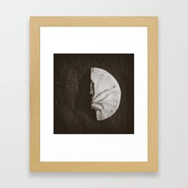 Half sand dollar Framed Art Print