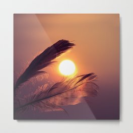 Sunset Feathers Metal Print