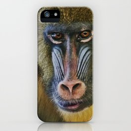 Princess the Mandrill iPhone Case