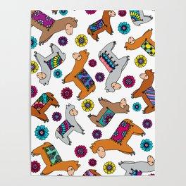 Fluffy Alpacas Poster