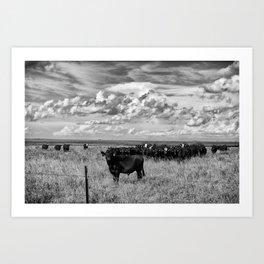 Prairie Cattle II Art Print