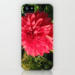 Blooming Just For You iPhone Case