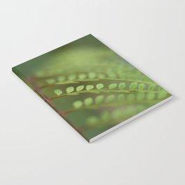 Jacaronda Mimosifolia Serie 1 No. 4 Notebook