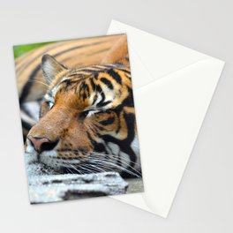 Tiger, Tiger Fast Asleep Stationery Cards