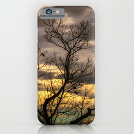 Autumns Eve iPhone Case