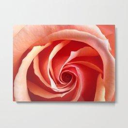 Rose Aperture Metal Print