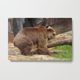 Teddy Bear At Rest 2 Metal Print