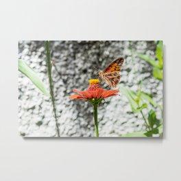 Butterfree Metal Print
