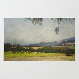 Fields of Solvang Rug