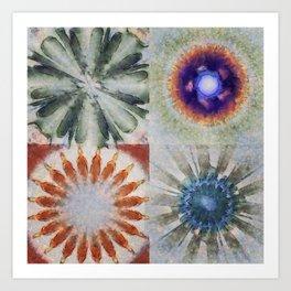 Aesthetes Formation Flowers  ID:16165-122917-34680 Art Print