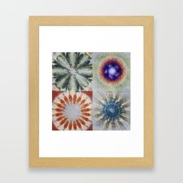 Aesthetes Formation Flowers  ID:16165-122917-34680 Framed Art Print