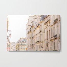 La Rue, Paris, France Metal Print