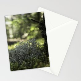 Mountain Forest Floor Stationery Cards
