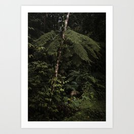 The Mantiqueira Ridge nº 13 Art Print