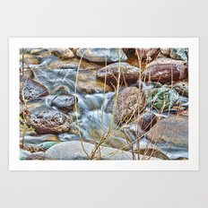 Jewel of the Creek Art Print