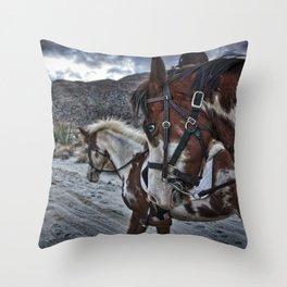 Horses, Anza Borrego, California Throw Pillow