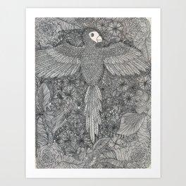 Arara Art Print