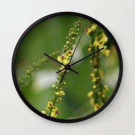 Where Fairies Live Wall Clock