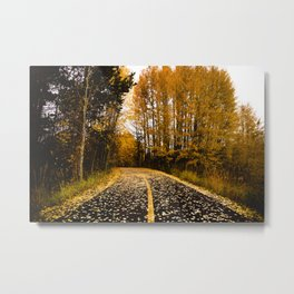 Fallow the Path Metal Print