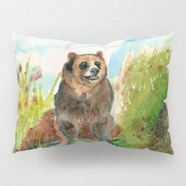 kodiak Pillow Sham