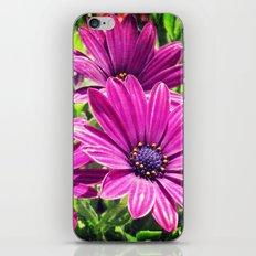 Flower Power 6 iPhone Skin