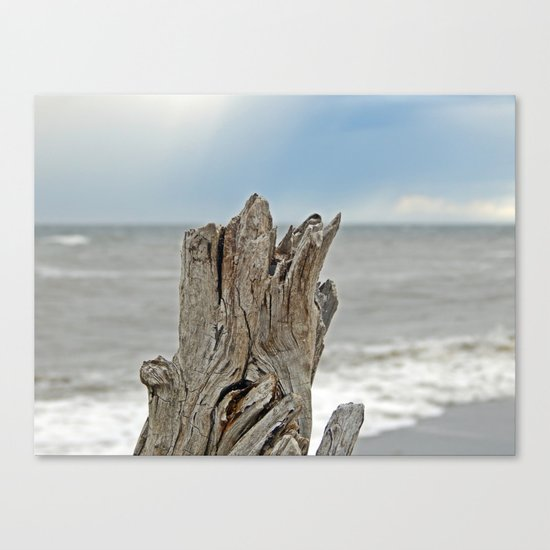 Looking past the Driftwood Canvas Print