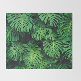 Monstera leaf jungle pattern - Philodendron plant leaves background Throw Blanket