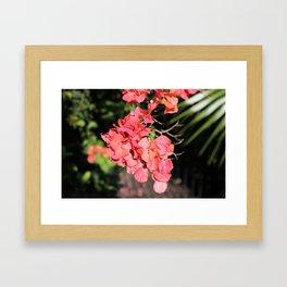 Hot Coral Floral Framed Art Print