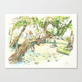 Castrelos Canvas Print