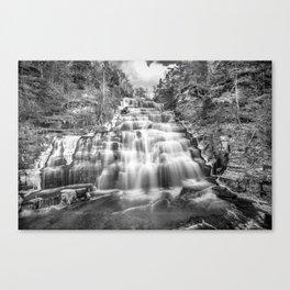 B&W falls Canvas Print