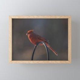Bird On A Wire Framed Mini Art Print