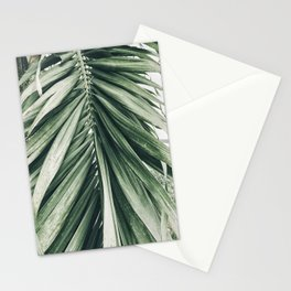 Natural Background 79 Stationery Cards