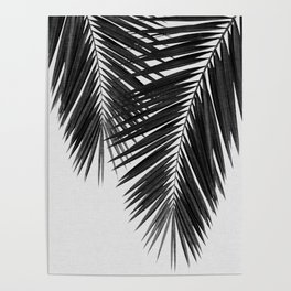 Palm Leaf Black & White II Poster