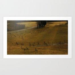 Migration - Nature Art Print
