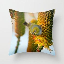 Silvereye Launch Throw Pillow
