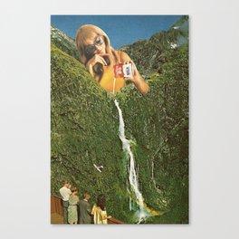 Milky Falls Canvas Print