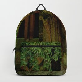A Secret Door to a Magic Place? Backpack