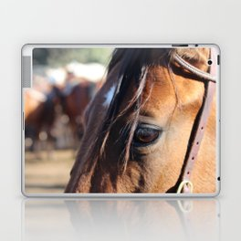 Horse-1 Laptop & iPad Skin