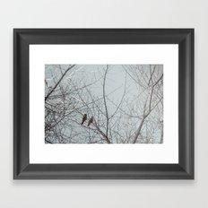city bird Framed Art Print