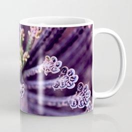 Purple Euphorbia in Detail Coffee Mug