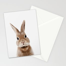 Bunny Print Stationery Cards