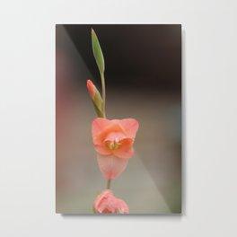 A Solo Bulb in Bloom Metal Print