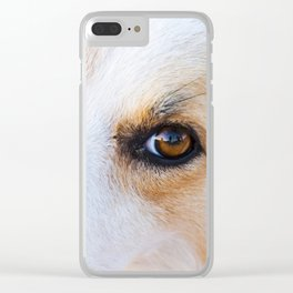 Portrait of a lovely stray dog Clear iPhone Case